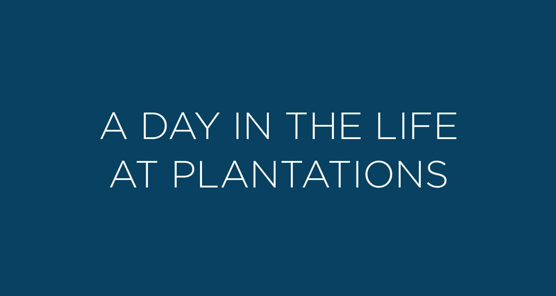A day in the life at Plantations